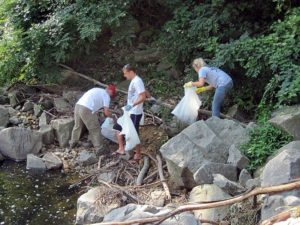 Barcroft Park/Four Mile Run clean-up