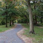 Virginia Highlands Park by Team Rank