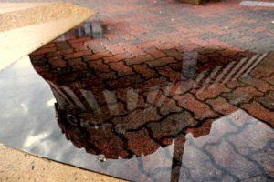 Rainy Reflections (photo by Katie Pyzyk)