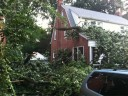 Storm damage in Arlington