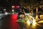 Storm damage around Arlington