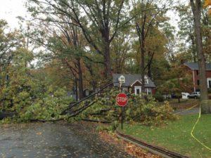 Storm damage in Westover (photo courtesy @ElizabethAFloyd)