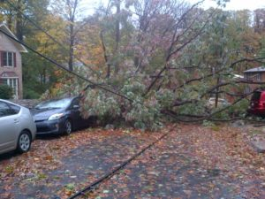 """Trees down on wires and cars, blocking the roadway, at S. Harrison Street and 5th Street S. (courtesy """"a Glencarlyn resident"""")"""