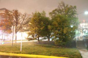 Sandy's winds impact Pentagon City overnight