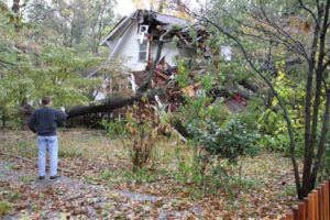 A tree came crashing through a house on the 2800 block of 2nd Road N. in Lyon Park. Four people were at home at the time; all escaped unscathed.