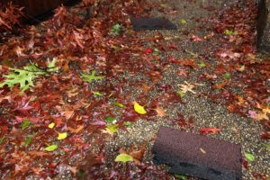Shingles torn from townhomes in Ballston