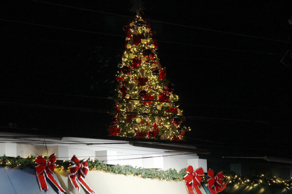 Christmas tree on top of Lee Heights Shops