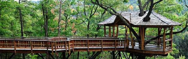 Treetop shelter similar to one proposed for Potomac Overlook Regional Park (photo via NVRPA)