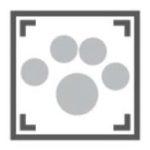 Loyalty Pet Care Logo