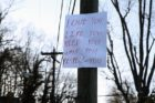 Love letters posted along Lorcom Lane