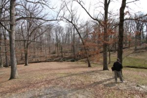 Most of the trees in this portion of Arlington Woods are set to be removed for the expansion of Arlington National Cemetery