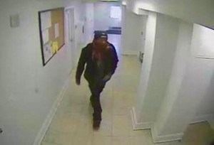 Colonial Village burglary suspect (photo courtesy ACPD)