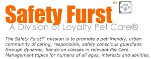 SafetyFurstLogo_Mission
