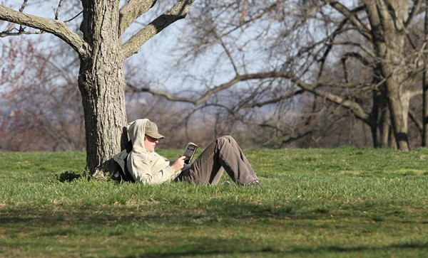 A man reading in a park on a spring day