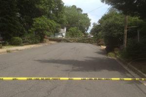 Tree down at 27th and N. Lexington Street (photo courtesy Nancy Tishman)