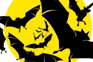 Bat Fest 2013 logo