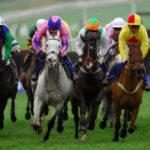 Horse Racing - Boylesports International - Day One - Cheltenham Racecourse