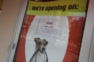Unleashed by Petco store in Ballston