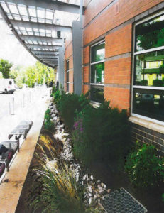 Washington-Lee High School landscaping
