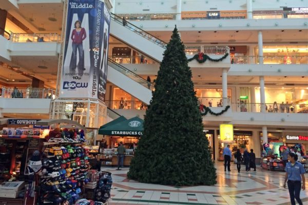 A Christmas tree goes up at Pentagon City mall
