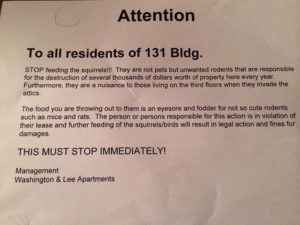 Flyer distributed to residents at Washington & Lee Apartments