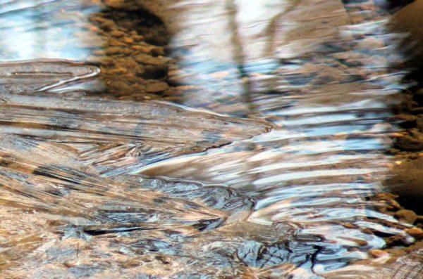 Water and ice (Flickr pool photo by ksrjghkegkdhgkk)