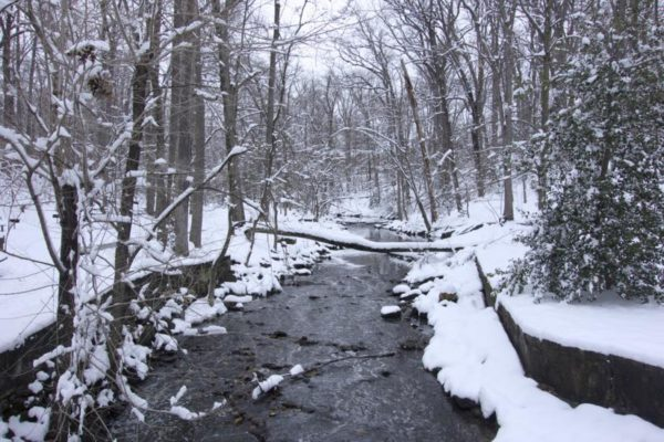 Snow in Lubber Run Park (Flickr pool photo by J. Sonder)