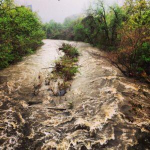 Flooded Four Mile Run (photo courtesy @gogogaryo)