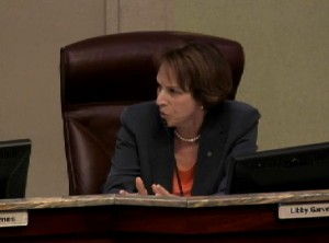 Libby Garvey at the 4/22/14 recessed County Board meeting