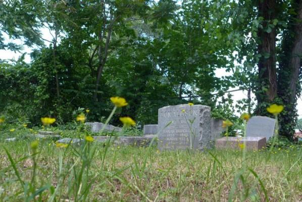 Family graveyard (photo via Preservation Arlington)