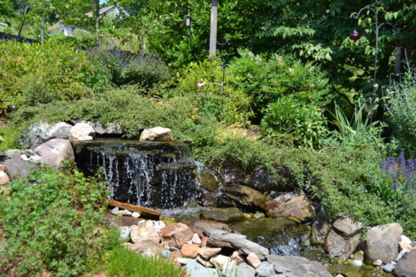 The water feature in Susan Murnane's second place garden.