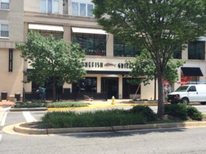 Bonefish Grill on Pentagon Row