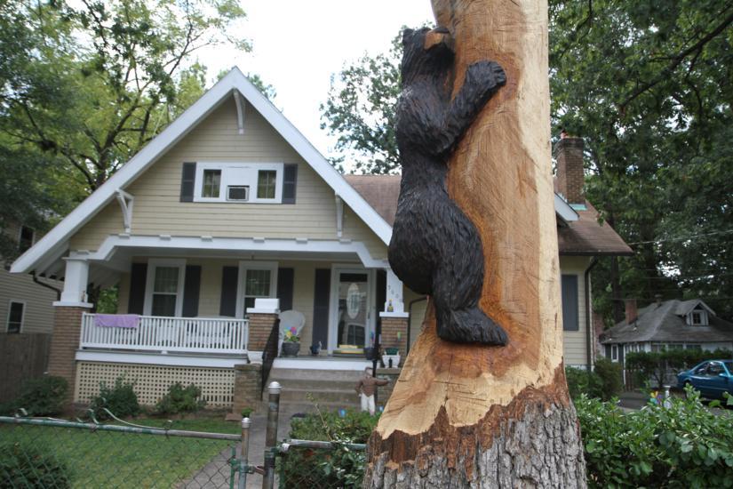 Tree in va square transformed into bear sculpture