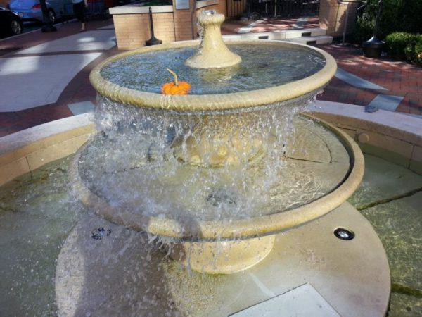 Pumpkin in a fountain in Clarendon