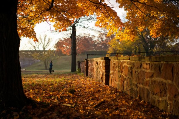Autumn jog (Flickr pool photo by Kevin Wolf)