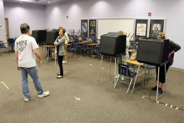 Voters at the polling place at Washington-Lee High School