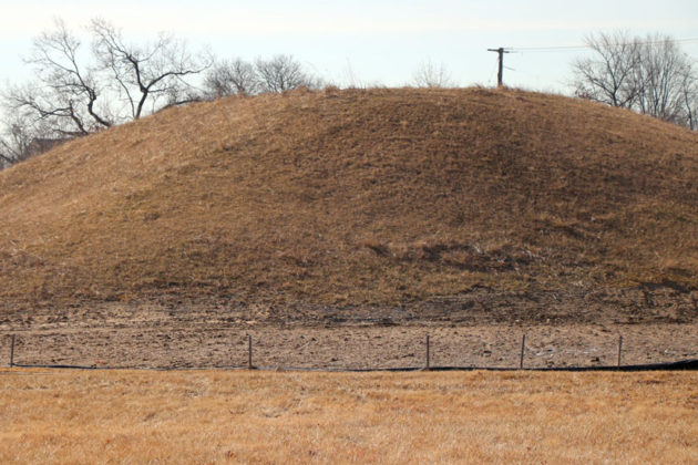 Hundreds of trees will planted on each mound, which is topped with at least 4 feet of soil