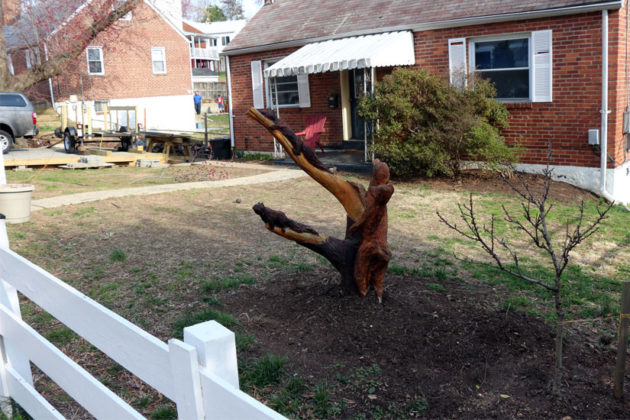 A woodland creatures carving in Douglas Park, on 19th Street S.