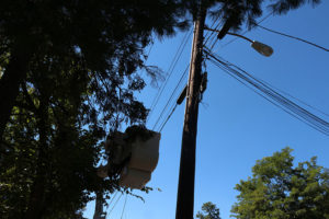Telephone pole that caught fire on Lorcom Lane