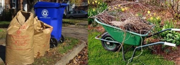Yard waste (photo via Arlington County)