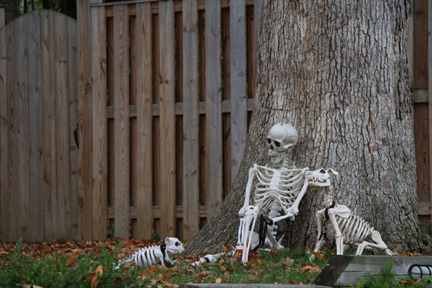 Halloween decorations on 15th Street N.