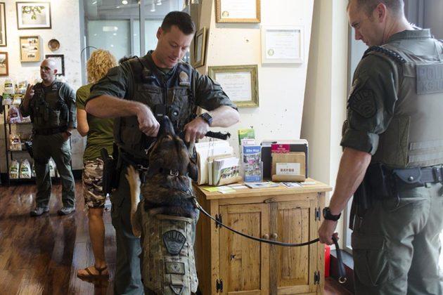 Sergeant Bryan Morrison plays with Arlington County Patrol Dog Duke