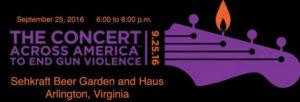 Sehkraft concert (Image via Facebook/Concert Across America)