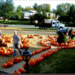 Pumpkins-Patch