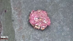 Pill-laden meatball found in Bluemont Park (screen capture via Fox 5)