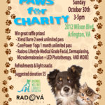 Paws for Charity flyer