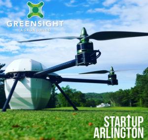 GreenSight logo