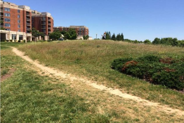 South Park at Potomac Yard has amenities like a large grassy slope (courtesy Arlington County)