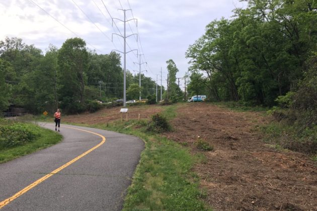 Meadow along W&OD Trail clearcut for invasive species control (photo courtesy Chris Slatt)
