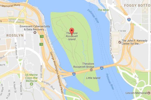 Roosevelt Island (photo via Google Maps)